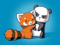 Cute Textnow Wallpapers 14 Best Panda Roux Images On Pinterest Red Panda Cartoon