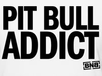 Everything Pit Bull