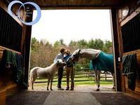 Inside an Equestrian's Life