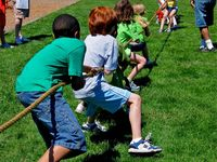 Tug Of War / people playing the popular outdoors game