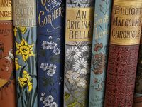 BOOKS~Old Illustrated Covers