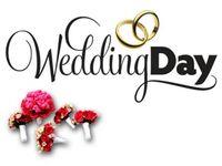Weddings ✉
