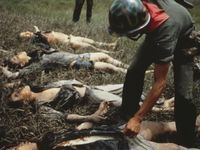 84 Best Images About Vietnam War On Pinterest Helmets