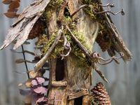 faerie dwellings