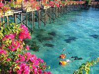 Resorts/Lodges/Retreats