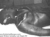 Otis Redding - Musicians killed in air crashes - Pictures ...