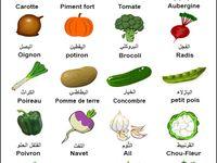 أسماء الحشرات باللغة الفرنسية Bee Insects