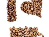 cafe notları