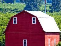 Barns with charm