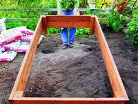 Gardening, yard, and landscaping Ideas