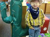 cowboys  ( wilde westen )