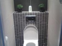 ... bilder om Wc idee på Pinterest  Toaletter, Väggdekor och Badrum