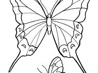 Adulting coloring pages ~ 33 best I'm not adulting today!! images on Pinterest ...