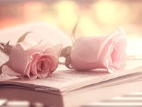 Книга и цветы..