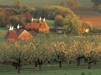 England - Kent