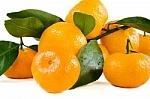 devotions: Fruit of the spirit
