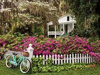 Outdoor Spaces & Garden