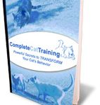 Cat Training In Under 10 Minutes a Day on Pinterest
