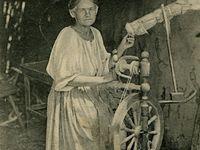 История в фотографиях и рисунках