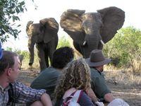 South African Adventure Activities