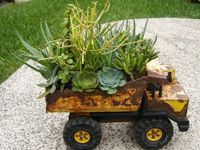things for your garden