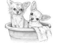 Pin De Luella D En Chihuahua Love Dibujos De Perros Dibujo De Perro Dibujos De Animales