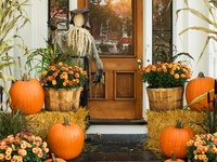 Fall, Halloween and Thanksgiving Ideas and more...