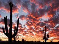 Arizona - My Travels