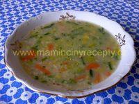 Polévky / Vaření polévek