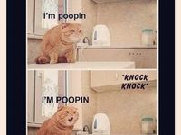 Sh!t my friends send me! LOL!