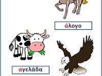 Greek language books & activities / Education, schools, activities
