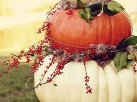 Fall and Halloween Ideas...BOO!!