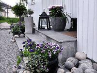 trädgård och uterum