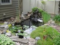 Gardening-Water
