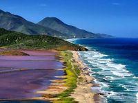 Du delta de l'Orenoque aux Andes en passant par l'Amazonie, le Venezuela offre des paysages majestueux, gage d'un total dépaysement. Jaguars, singes, paresseux, fourmiliers, ocelots, ours cerfs, et autres tatous peuplent cette merveilleuse destination. La beauté de ses plages et de ses îles font l'unanimité parmi les touristes, et notamment dans le célèbre archipel de Los Roques, ''must'' de la plongée sous-marine.