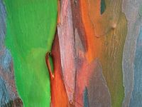 Texturas y color...