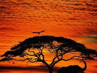 29 Best Inspiration images   Photography, Amazing photography ...