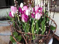 cvijeće dekoracija