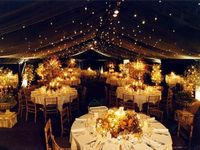 Weddings & Engagement Ideas