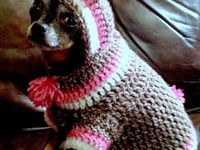 Crochet-Animal clothes