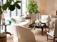 Decorating and Interior Design