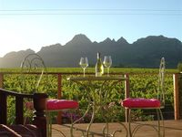 Stellenbosch, Winelands