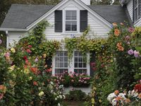 farmhouse, country living, shabby chic, hygge, neutral decor, garden, vegetables, flowers, children, family Home  Board