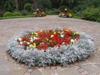 Die 11 Besten Ideen Zu Wow! Flower Displays Auf Pinterest | Gärten ... Blumenbeet Anlegen Teppichbeet Tipps
