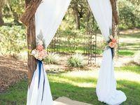 Allison's wedding