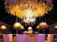 Wedding - Receptions / Events
