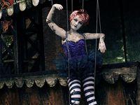 Circus & carnivals