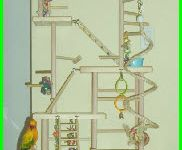 Bird Play Stands