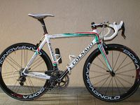 for COLNAGO graphic