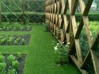 How to build an attractive veggie garden enclosure to protect from rabbits, possums, bandicoots and kangaroos!!